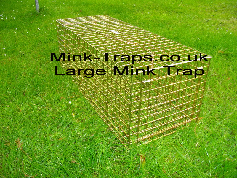 larger mink trap